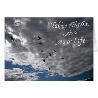 Taking Flight with a New Life Card