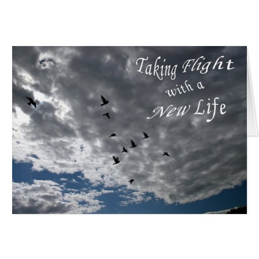 Taking Flight with a New Life Greeting Card