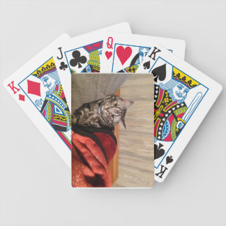 taking it easy bicycle playing cards