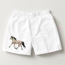 Taksony Pony Boxers