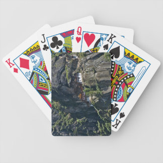 Taktsang Monastery on the cliff, Paro, Bhutan Bicycle Playing Cards