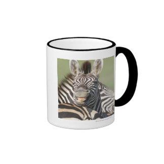 Tala Private Reserve, Kwazulu Natal, South Ringer Mug