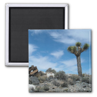 Talc Mine Ruins with Joshua Tree 2 Inch Square Magnet