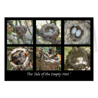 Tale of the Empty Nest Cards