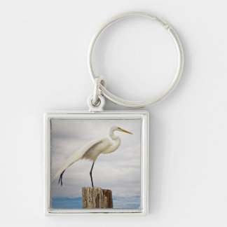 Talented Egret | Fort Myers Beach, Florida Keychain