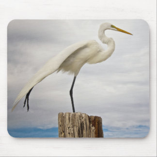 Talented Egret | Fort Myers Beach, Florida Mouse Pad