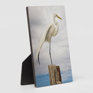 Talented Egret | Fort Myers Beach, Florida Plaque
