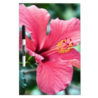 TALK HIBISCUS FLOWER Dry-Erase BOARD