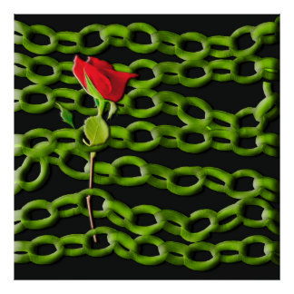Talk rose saved with green chains poster