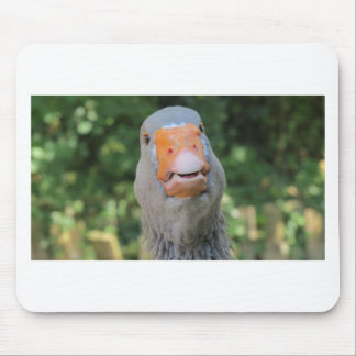 talk-to-me-993309.-duck mouse pad