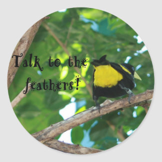 Talk to the feathers! Stickers