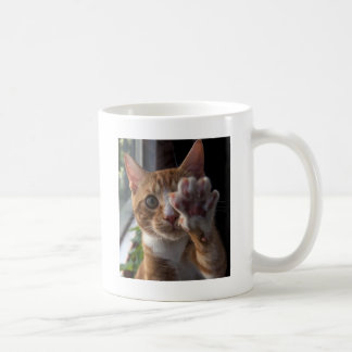 talk to the paw coffee mug