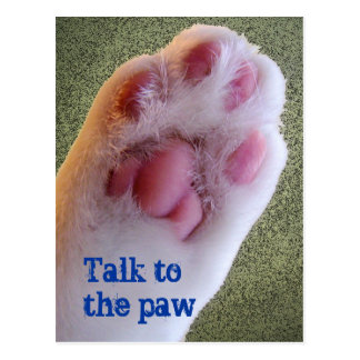 Talk to the Paw Postcard
