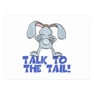 Talk to the Tail Bunny Rabbit Postcard