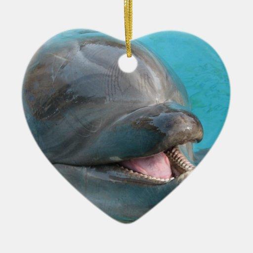 Talkative Dolphin Ornament