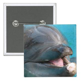 Talkative Dolphin Pin