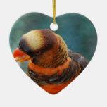 Talkative Lorikeet  Ornament