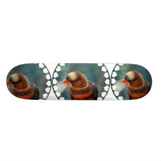 Talkative Lorikeet  Skateboard