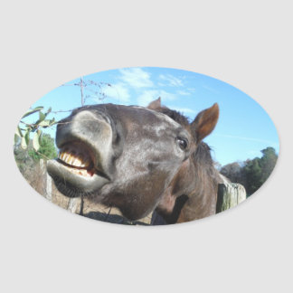 Talking Brown Horse Oval Sticker
