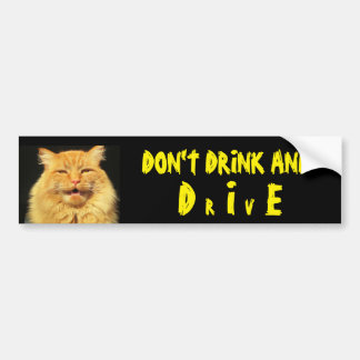 Talking Cat Says Don't Drink And DIE (Drive) Bumper Sticker