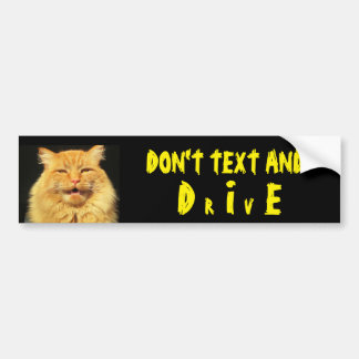 Talking Cat Says Don't Text And DIE (Drive) Bumper Sticker