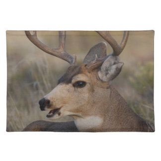 talking deer cloth placemat