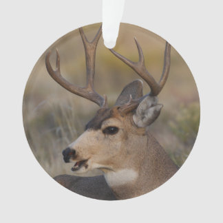 talking deer ornament