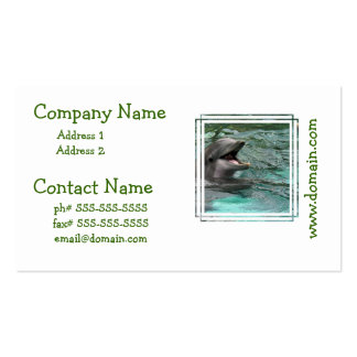 Talking Dolphin Business Cards