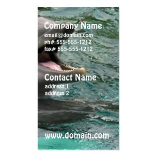 Talking Dolphin Double-Sided Standard Business Cards (Pack Of 100)