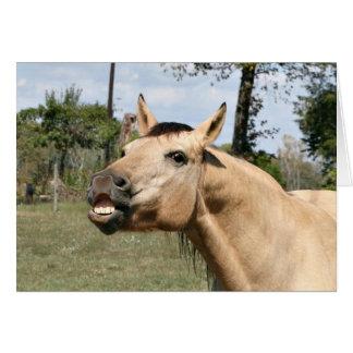 Talking horse greeting card