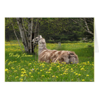 Talking Llama Cards