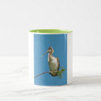 Talking Pelican Two-Tone Coffee Mug
