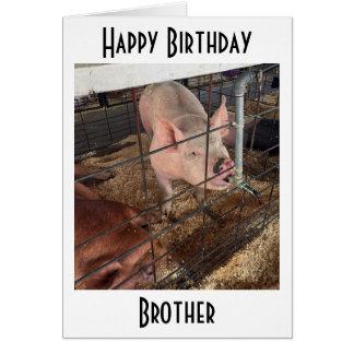 "TALKING PIG LOVES HIS ""OLDER BROTHER"" BIRTHDAY CARD"