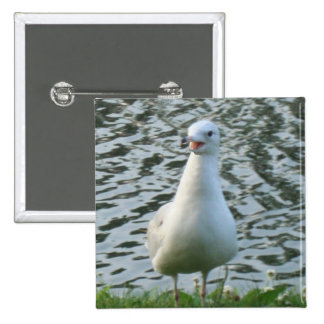 Talking Seagull Button