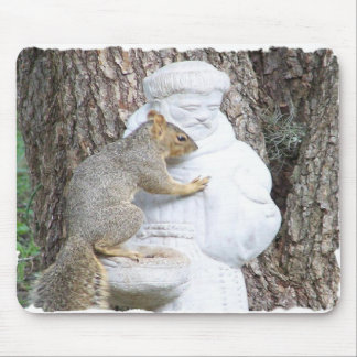 TALKING TO SAINT FRANCIS MOUSE PAD