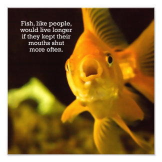 Talking Too Much Goldfish Photo Print