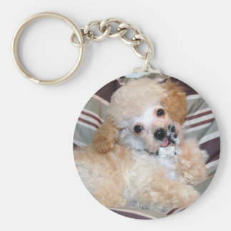 Talking Toy Poodle Puppy Basic Round Button Keychain