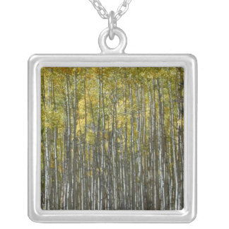 Tall Aspens necklace