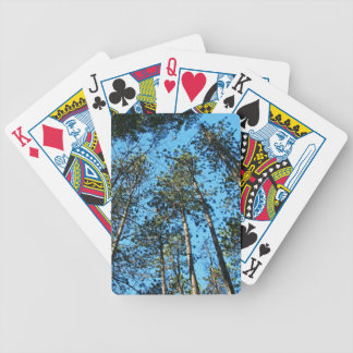 Tall Aspirations Bicycle Playing Cards
