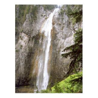 Tall Cool Waterfall Mt Rainier National Park Photo Postcard
