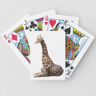 Tall Cute Giraffe Real Animal Photo Bicycle Playing Cards