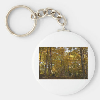 Tall fall color trees basic round button keychain
