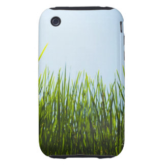 Tall green grass against blue sky with sun iPhone 3 tough case