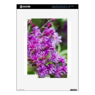 Tall Ironweed Wildflowers iPad 3 Decal