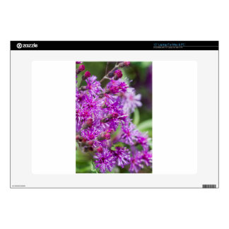 Tall Ironweed Wildflowers Laptop Decal