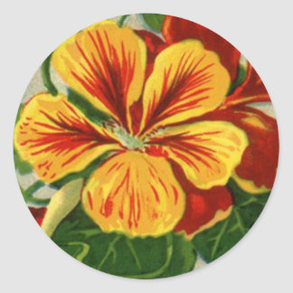 tall nasturtium classic round sticker