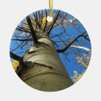 Tall Quaking Aspen Tree Ceramic Ornament