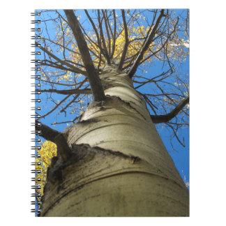 Tall Quaking Aspen Tree Spiral Notebook
