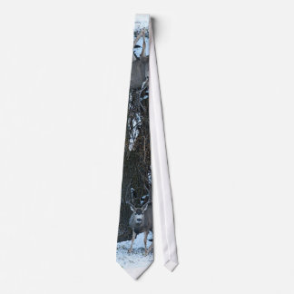 Tall rack buck tie