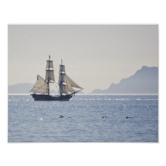 Tall ship Lady Washington poster